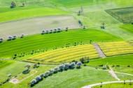 Felder und Alleen von Lichtenberg im Bundesland Sachsen
