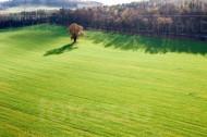 Feld- und Waldlandschaft auf den Hügeln