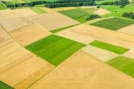Felderlandschaft in der Nähe von Böhmenkirch im Bundesland Baden-Württemberg