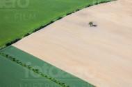 Felder, Sträucher und ein Baum
