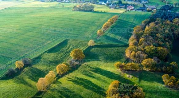 Feld und Waldlandschaft am Rande einer Stadt