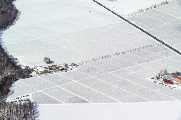 Felderstrukturen im Winter