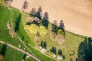 Wiesen und Bäume am Feldrand