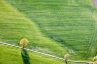 Traktorspuren auf dem Feld