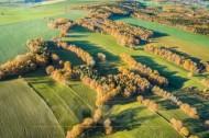 Wiesen, Felder und Waldlandschaft