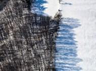 Waldrand in Schnee getaucht im Winter