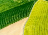StraÃ?e in den Feldern von Leppersdorf im Bundesland Sachsen