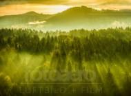 Berglandschaft der Sächsischen Schweiz am Felsental im Bundesland Sachsen