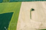 Wassertümpel umringt von Felderlandschaft