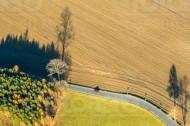 StraÃ?enbiegung mit Feld, Wiese und Wald