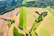 Felder, Wiesen und Waldlandschaften