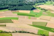 Felder von Lösau in der Nähe von Wei�enfelds im Bundesland Sachsen