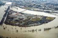 Ostragehege in Dresden im Bundesland Sachsen bei Hochwasser
