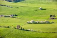 Wiesenlandschaft unterbrochen von Wegen und Baumreihen