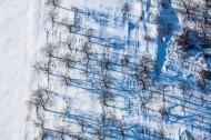 Schneeverwehungen im Wald