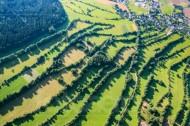 Wiesen und Wälder Landschaft an einem kleinen Dorf